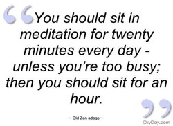 You should sit in 