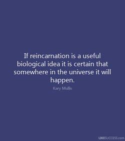 If reincarnation is a useful 