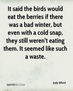 It said the birds would 