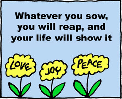 Whatever you sow, 