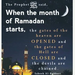 The Prophet 