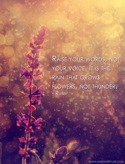 RAISE YOUR WORDS, NOT 