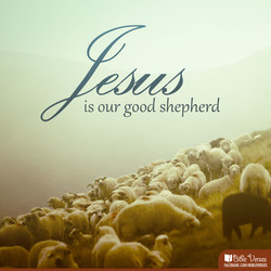 is our good shepherd 