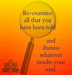 Re-examine 