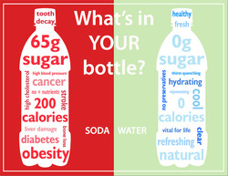 Wha s In 