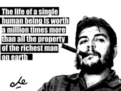 The life ofa sin Ie 