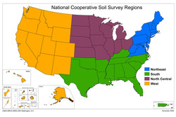National Cooperative Soil Survey Regions 