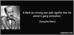 A black cat crossing your path signifies that the 