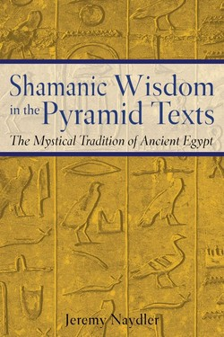 Shamanic Wisdom 