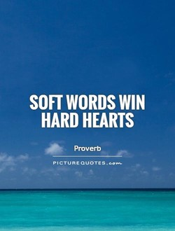 SOFT WORDS WIN 