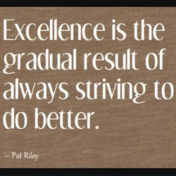 Excellence is the 