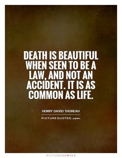 DEATH IS BEAUTIFUL 