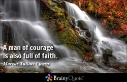 •Amano courage 