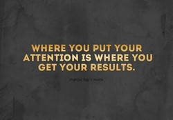 WHERE YOU PUT YOUR 