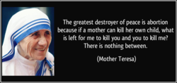 The greatest destroyer of peace is abortion 