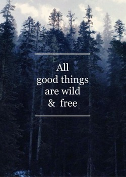 All 