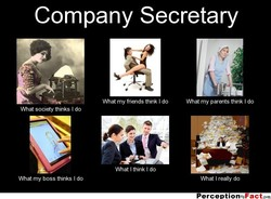 Company Secretary 