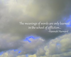 The meanings of words are only learned 