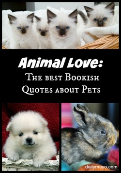 Animal Love: 