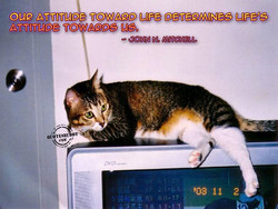 oup ATTITUDE TOWAPD LIFE OETEPMINES LIFE'S; 