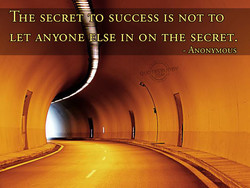 THE SECRET TO SUCCESS IS NOT TO 