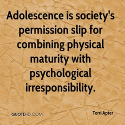 Adolescence is society's 