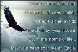 When arstorm is coming, 