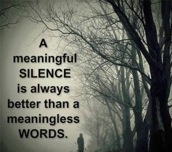 meaningfu 