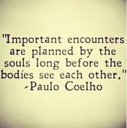 encounters 