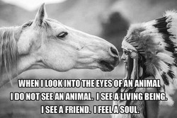 WHEN ILOOKINTO THE EYES OF AN ANIMAL 