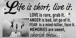 c/trf, å'bV 