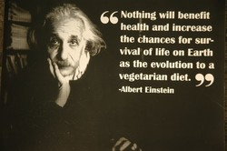 66 Nothing will benefit health and increase the chances for sur- Vival of life on Earth as the evolution to a vegetarian diet. -Albert Einstein