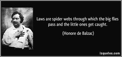 Laws are spider webs through which the big flies 