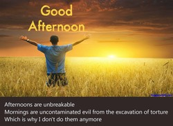Good Afternoon Afternoons are unbreakable Mornings are uncontaminated evil from the excavation of torture Which is why I don't do them anymore