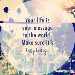 _pur life is 