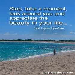 Stop, take a moment, 