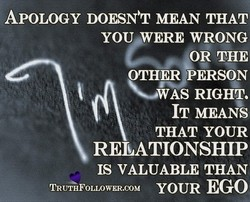 APOLOGY MEAN THAT 