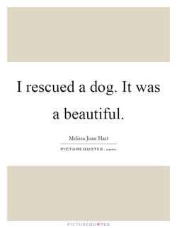 I rescued a dog. It was 