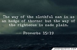 The way of the slothful man is as 
