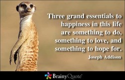Three grand essentials to 