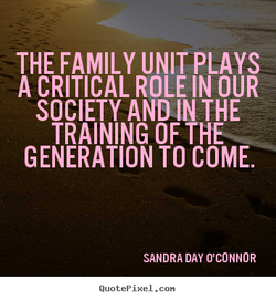THE FAMILY UNIT PLAYS 