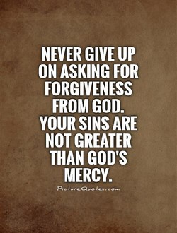NEVER UP 