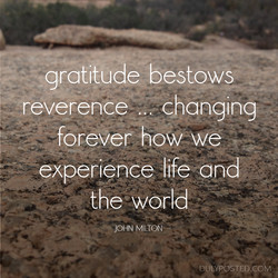 gratitude bestows 