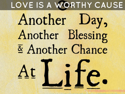 LOVE IS A WORTHY CAUSE Another Day, Another Blessing Another Chance Life.