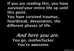 If you are reading this, you have 