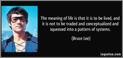 The meaning of life is that it is to be lived, and it is not to be traded and conceptualized and squeezed into a pattern of systems. (Bruce Lee) izquotes.com