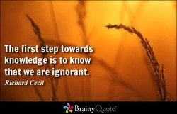 The first step towards knowledge is to know that we are ignorant. Richard Cecil BrainyQuote&