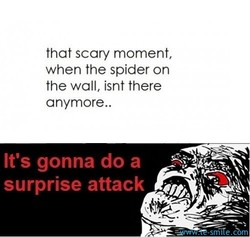 that scary moment, 
