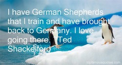 I have German Shepherd 