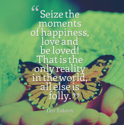 Seize the 